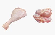 poultry-fusi